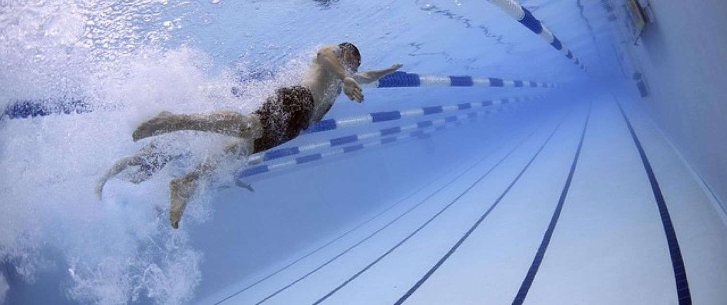 A swimmer in the water