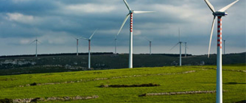 Windmills in a landscape